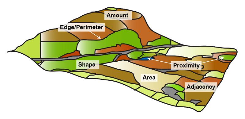 landscape metrics