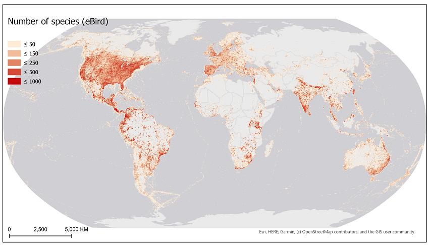 ebird map as VGI example
